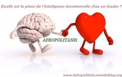 Intelligence émotionnelle_Afropolitanis
