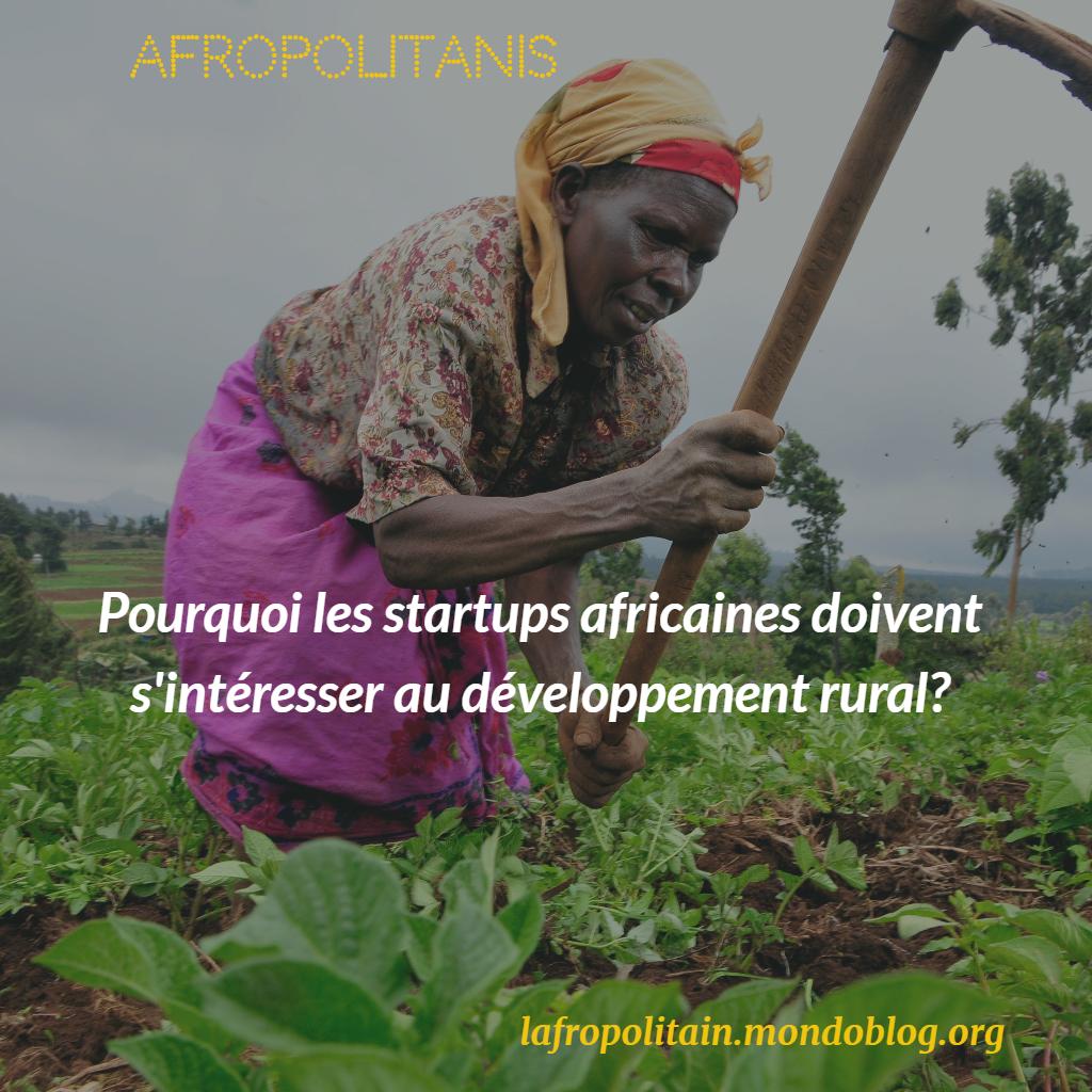 Developpement rural_startup africaine_entrepreneurial_Afropolitanis